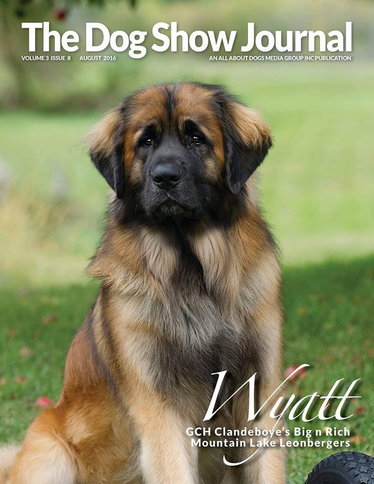 Wyatt 2016 Dog Show Journal
